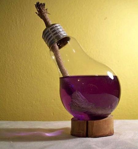 масляный светильник из обычной лампочки