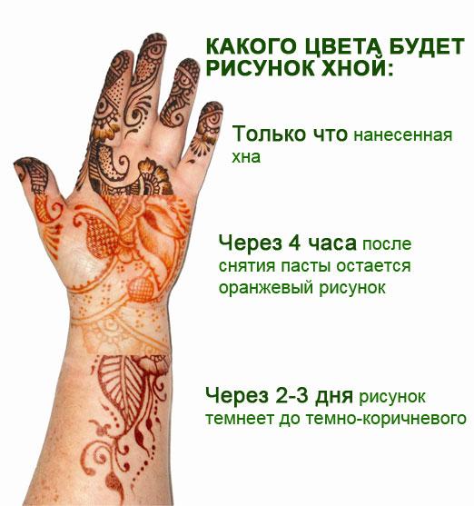Мехенди на руке легкие рисунки - фото временной тату хной 3338