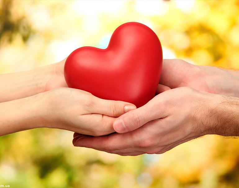 любите мир, любовь к жизни