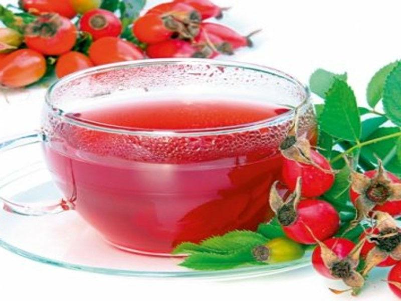 чай на основе шиповника, полезные свойства