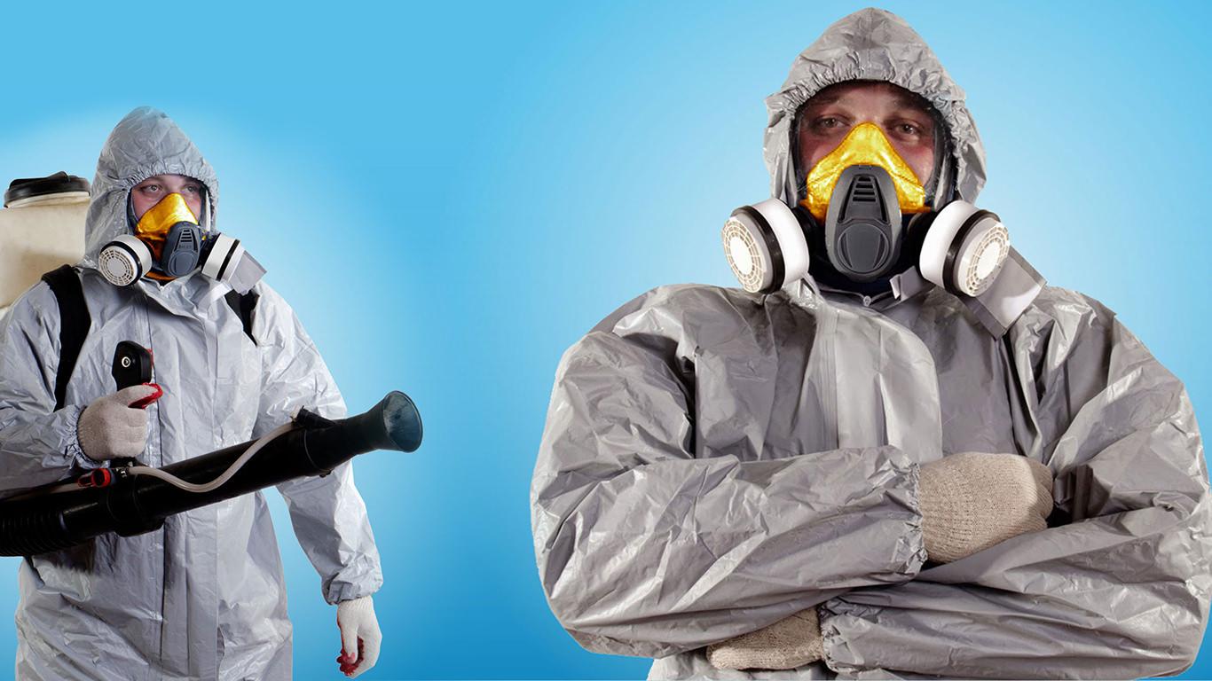 специалисты сэс по обработке помещений, борьба с блохами, насекомыми