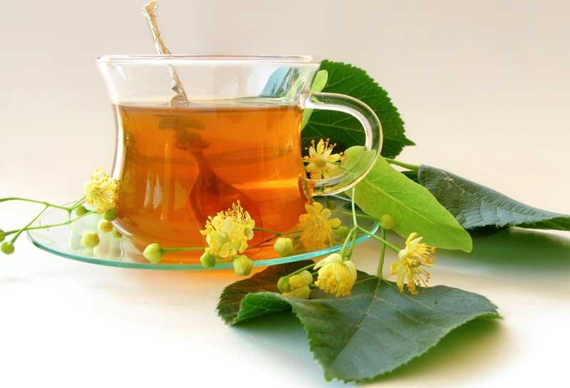 липа, чай с липой, напиток